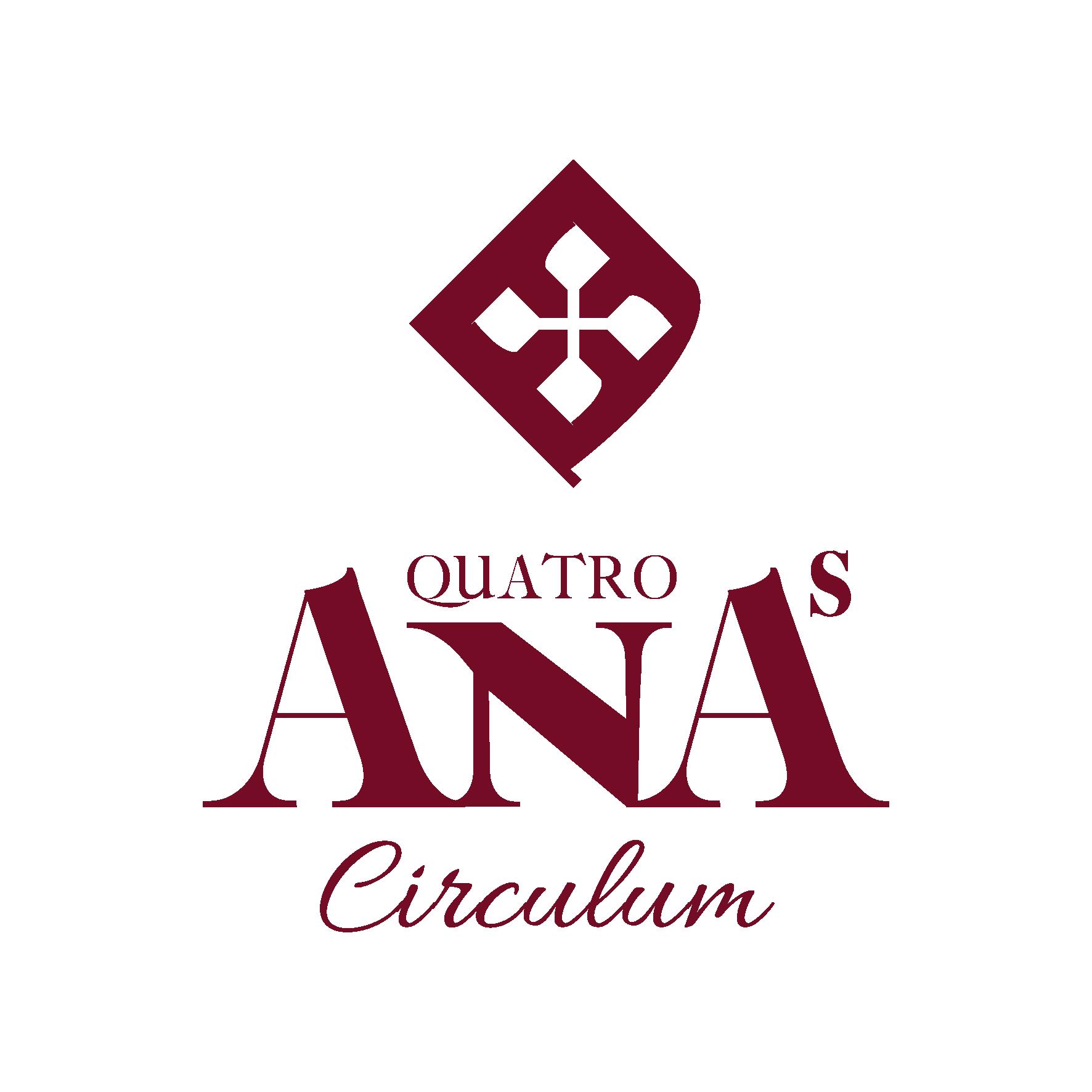 circulum logo